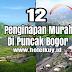 12 Penginapan dan Hotel di Puncak Bogor Murah mulai 140 ribuan saja untuk pacaran