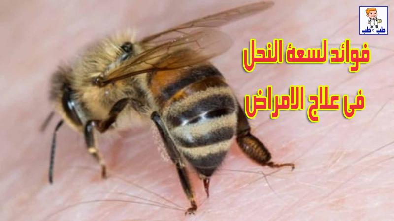 العلاج بسم النحل,فوائد لسعة النحل للمفاصل,هل لسعة النحل علاج لجميع الأمراض فعلا؟,لسعات النحل,سم النحل,ما فائدة لسعة النحل,كيف تعالج لسعة النحل,سم النحل علاج لجميع الامراض,علاج انتفاخ لسعة النحل,لسعة النحل علاج,كيف يتم علاج لسعة النحل,العلاج بلسعات النحل,فوائد العلاج بلسعات النحل,فؤائد لسعة النحل,علاج تورم لسعة النحل,فوائد العلاج بسم النحل,فوائد لسعات النحل,علاج الروماتيزم و التهاب المفاصل,العلاج بسم النحل لن تصدقو فؤائد لسع النحل
