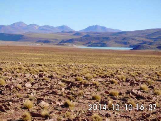 hier im Hochland von Bolivien