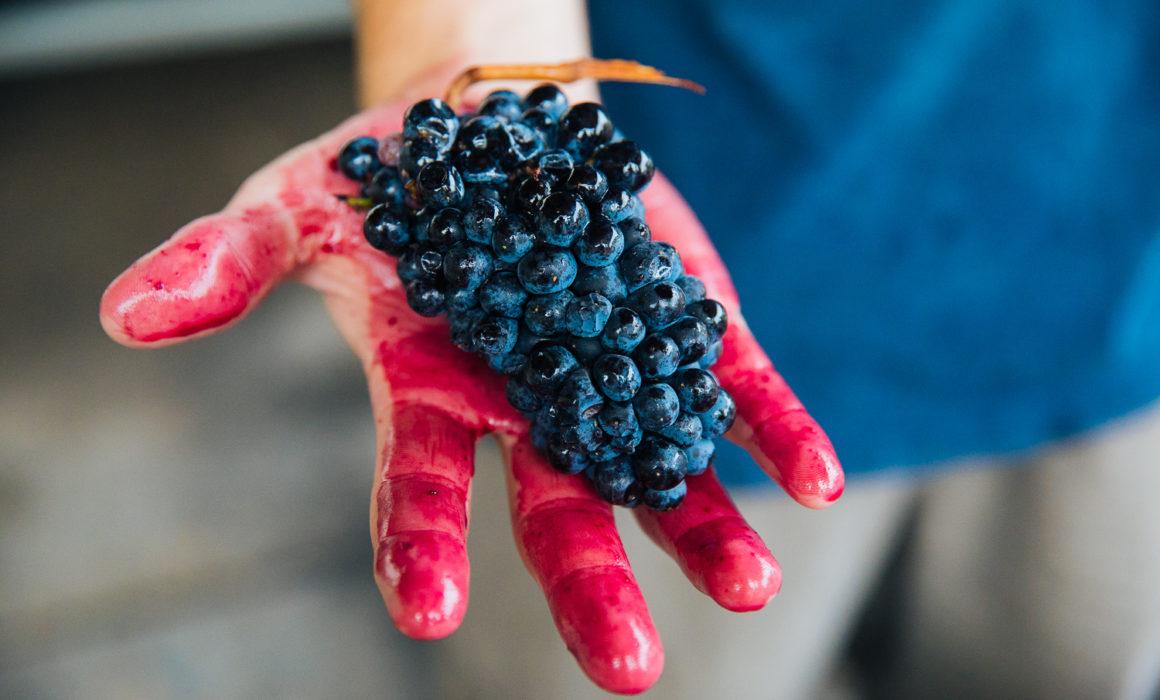 Πως αντιμετωπίζουμε τον λεκέ από ερυθρό κρασί