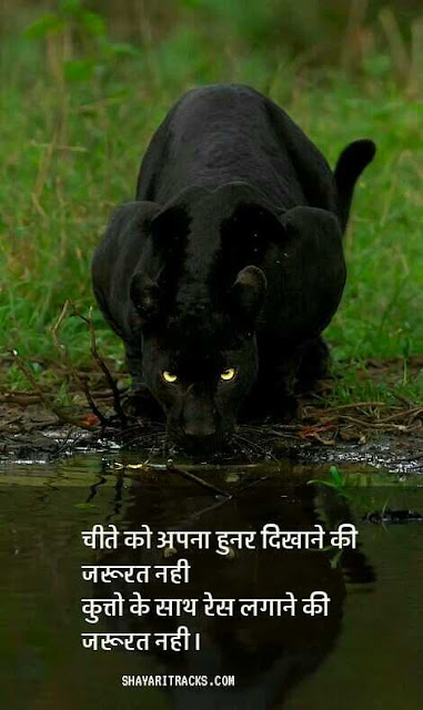 MAST SHAYARI ATTITUDE images