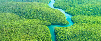 दुनिया की सबसे बड़ी नदी अमेजन नदी से जुड़े रोचक तथ्य । Interesting Fact about World Largest River Amazon