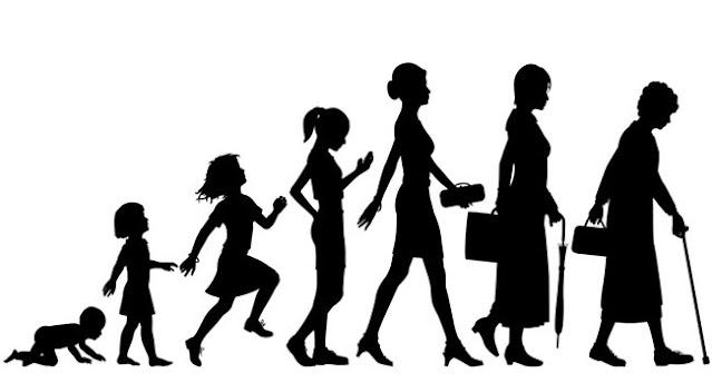 periode pertumbuhan manusia, siklus pertumbuhan manusia, pertumbuhan manusia