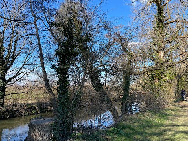 Exploring Tonbridge Castle and Surrounds