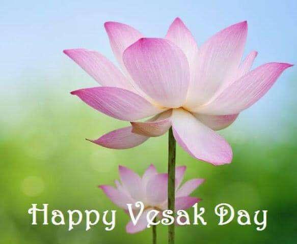 Vesak Wishes Sweet Images