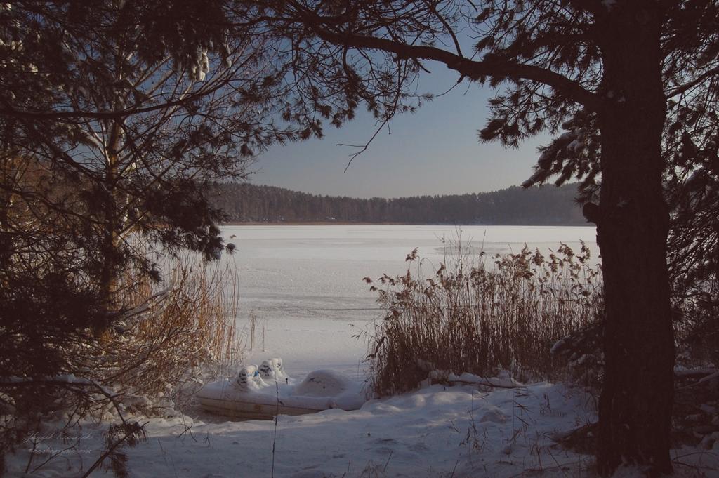 Jezioro Tyrsko, rezerwat przyrody Redykajny