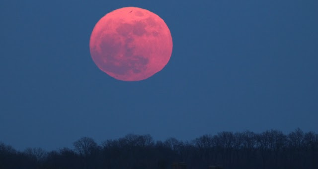 Superluna rosa de abril, un fenómeno astronómico
