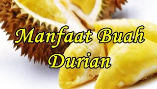 10+4 Manfaat & Khasiat Buah Durian untuk Kesehatan