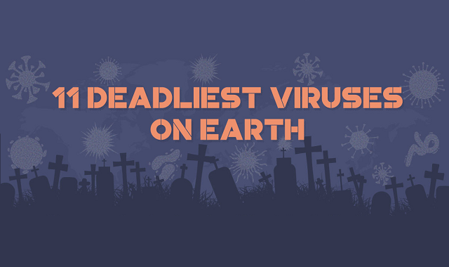 Most lethal viruses in the world