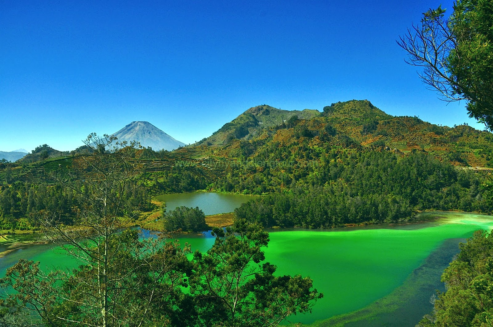 http://cityhyangdiengtour.blogspot.com/2014/10/dataran-tinggi-dieng-dieng-plateau.html