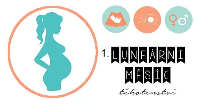 těhotenství blog, mama blog