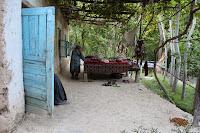 Uzbekistan, Sentyab, topchan, © L. Gigout, 2012