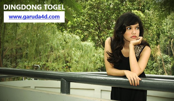 Situs DingdongTogel.com