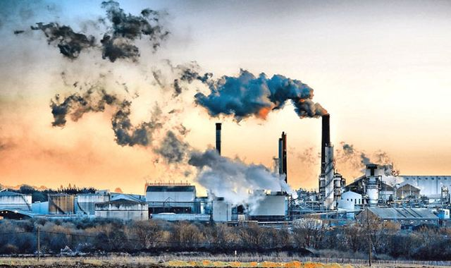 essay on pollution in your city The history of pollution in new york city essay - once the clean water act was passed, is when these standards became common throughout the nation.
