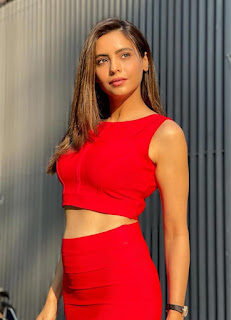 Indian actress Aamna Sharif sizzles in a red skirt with crop top actressbuzz.com