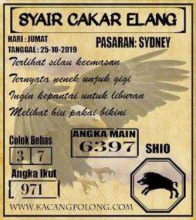 SYAIR SYDNEY 25-10-2019