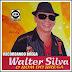Walter Silva - Vol. 04