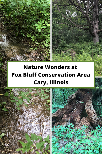 Rolling Trails and Rambling Water Entice at Fox Bluff Conservation Area in Cary, Illinois