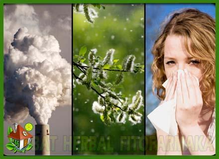 asma asap, penyebab asma, faktor asma, radang paru-paru