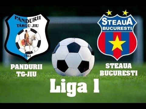 Urmariti meciul Pandurii Tg. Jiu - Steaua București Live pe DolceSport 1 si Look Plus
