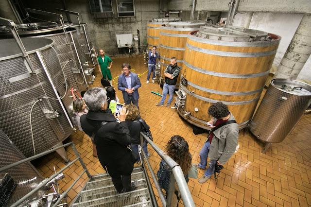 Vendemmia e lavorazione uva-Azienda vinicola Fontezoppa