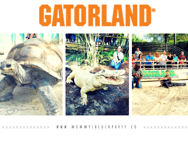 Get Ready For Wild Fun For The Whole Family At GatorLand Orlando