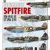 Supermarine Spitfire Mk.VI à IX et XVI, les avalanches de profils ne provoquent pas de blessés !