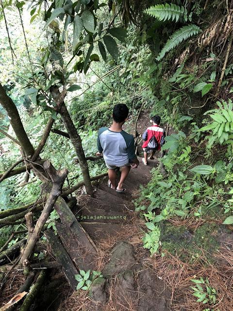 Tangga yang hampir lapuk di samping jurang menuju Curug Badak Batu Hanoman Tasikmalaya || JelajahSuwanto