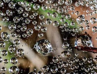 دعاء المطر مستجاب بإذن ألله