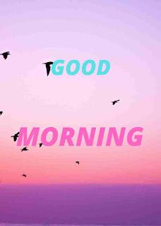 GOOD MORNING IMAGE FOR A FRSH MORNING