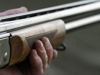 Τσίπιανα: Σκότωσαν γαϊδαρο με κυνηγετικό όπλο