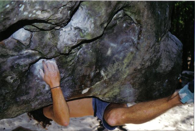 Dans Scolopendre, Dame Jeanne, Larchant, (C)1995 Greg Clouzeau