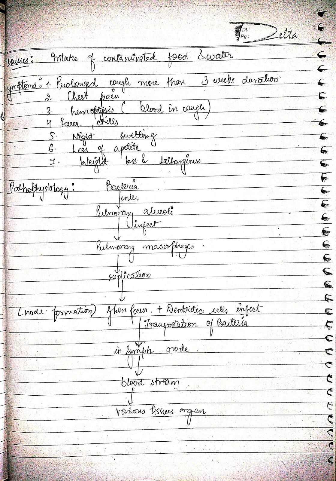 pathophysiology - tuberculosis