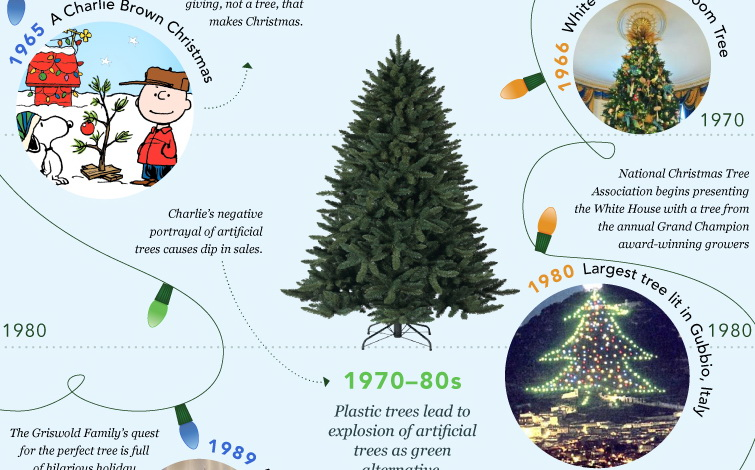 History Of Christmas Tree.The Visual History Of Christmas Trees Infographic Damn