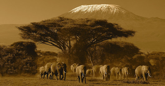 Nomad travel places to explore beauty of nature world, ask for Tanzania safaris and adventure treks