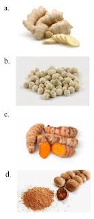 gambar soal tanaman untuk kesehatan kelas 4