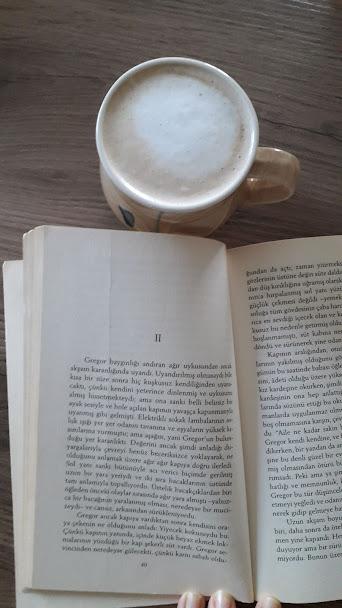 Franz Kafka Dönüşüm kitap incelemesi