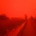 Langit Jambi Merah Darah karena Karhutla Jadi Sorotan Dunia