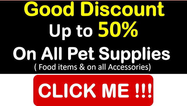 Pet shops in Rudrapur, Rudrapur Pet Shops, Pet Shop Near Me Rudrapur