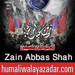 http://www.humaliwalayazadar.com/2016/07/zain-abbas-shah-nohay-2011-to-2017.html
