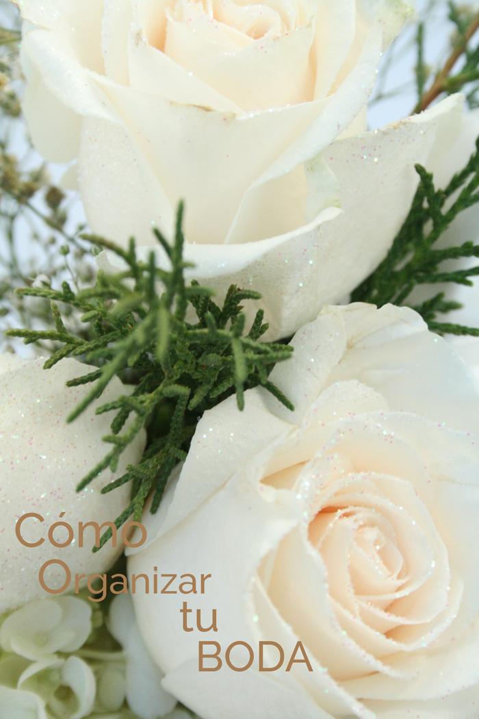 VALENTINA VAGUADA: boda, planificar, flores, rosas, planificadora de eventos