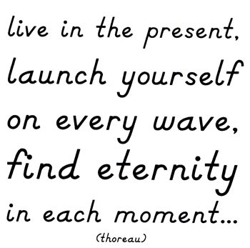 Just Ask D: Live in the Now!
