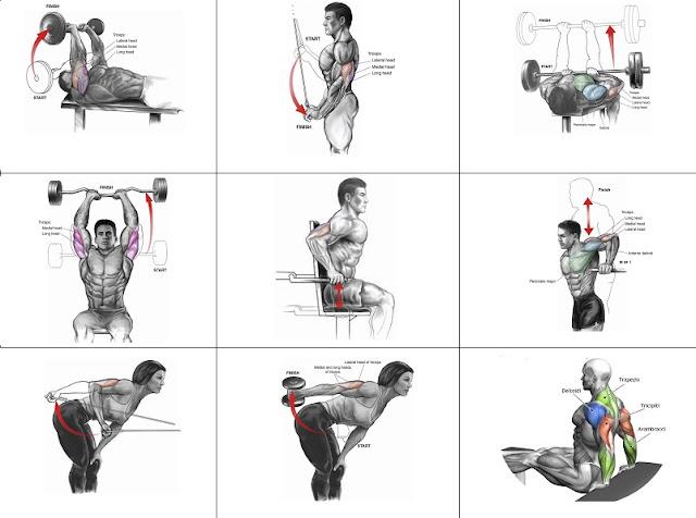 triceps machine exercises