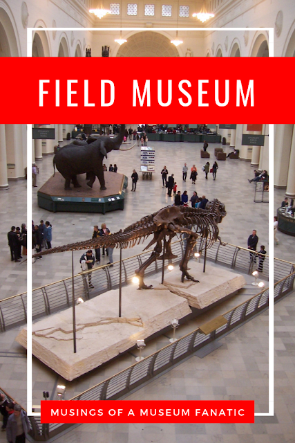 Field Museum in Chicago by Musings of a Museum Fanatic