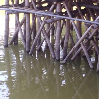 Cara Menjadikan Bambu Awet dengan Mudah