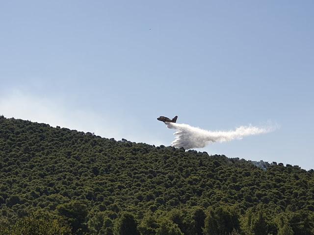 Οριοθετήθηκε η πυρκαγιά στο Σοφικό Κορινθίας