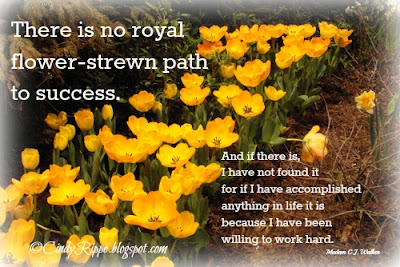 Yellow Tulips, Garden Path, Success Quotes, Madam C.J. Walker quote, Florals-Family-Faith, Cindy Rippe