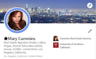 mary cummins linkedin all-star los angeles california real estate appraiser appraisal