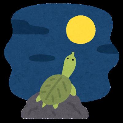 月とスッポンのイラスト