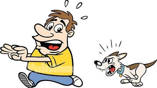 Pengalaman Dikejar Anjing Sampai Nangis Ketika Hendak Mencari Keong